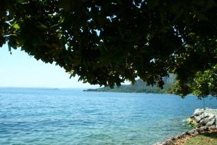 cartoline dal lago eventiarmonici.com
