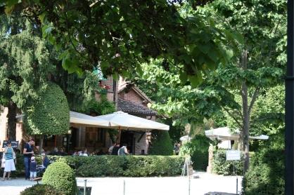 Vegetazione a Grazzano Visconti